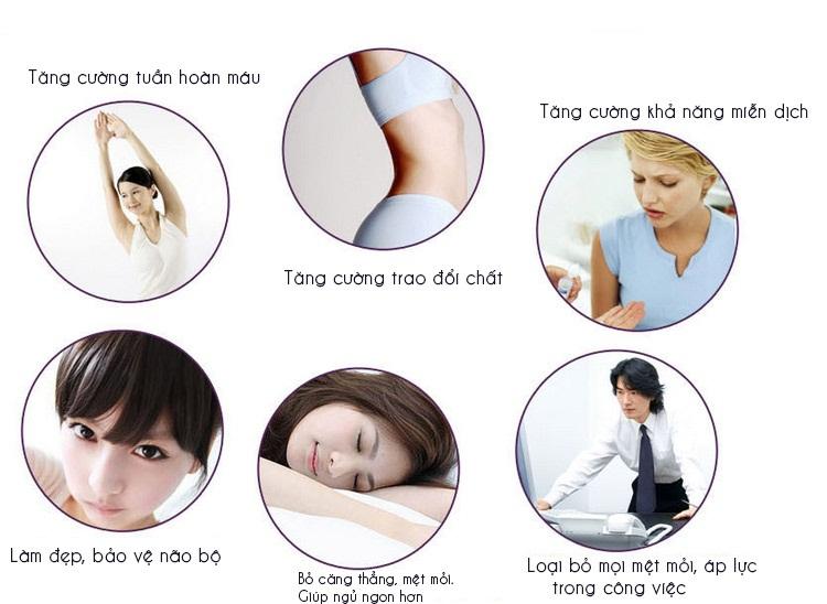 Đệm massage Maxcare Max-365B